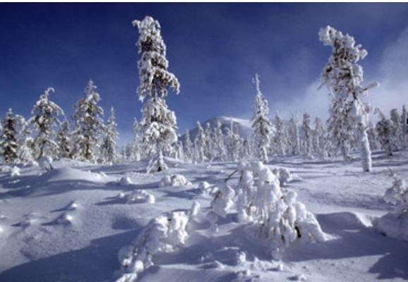 РФ в феврале ожидают аномалии в погоде »