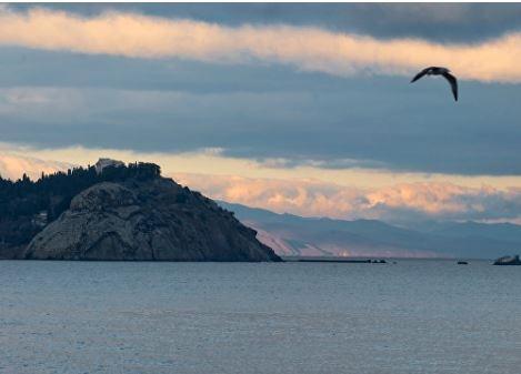 Украина заявила, что РФ обстреляла самолет над Черным морем »