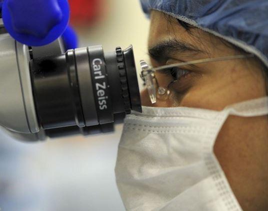 Американские ученые не исключают скорое появление ГМО-людей »