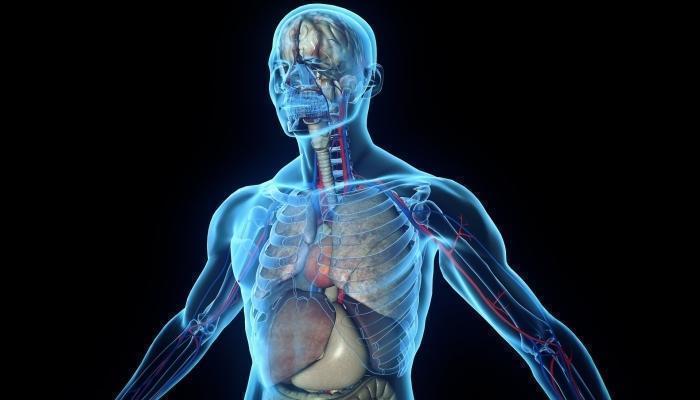Список витаминных комплексов от стресса и нервов