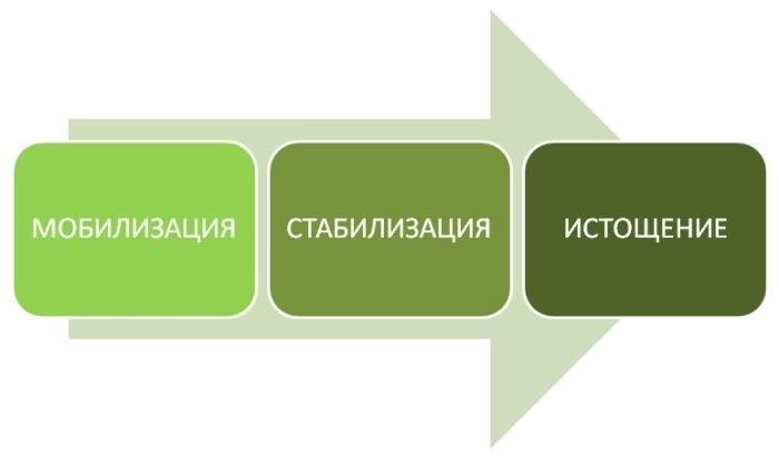 Классификация стадий развитий стресса