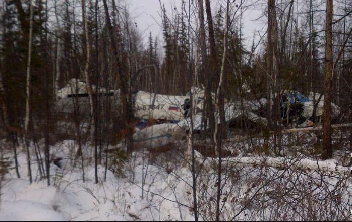 Местные жители не дали упавшему под Хабаровском самолёту L-410 вспыхнуть