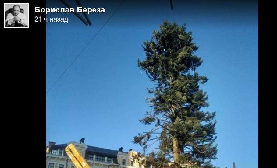 Главная новогодняя елка Украины вызвала горький смех у жителей страны
