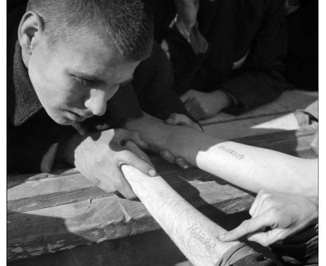 Спустя 50 лет татуировщик из Освенцима поведал свою душераздирающую историю