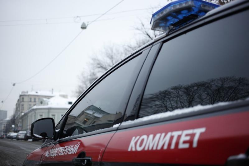 В Подмосковье мать спрятала под снегом у ЖД-путей новорожденную дочь