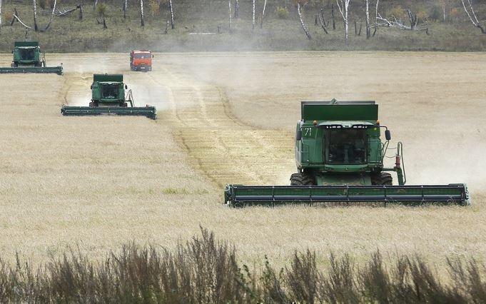 Bloomberg: РФ бьёт рекорды по экспорту пшеницы и ее не остановить