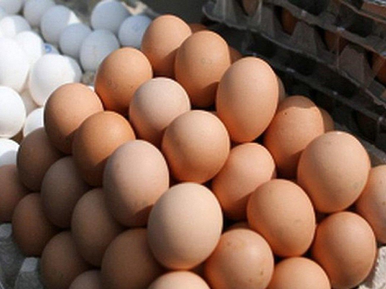 """В Индонезии появился мальчик, """"откладывающий"""" куриные яйца"""