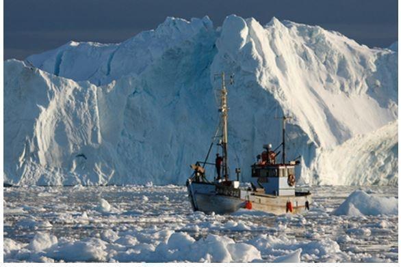 На Северном полюсе появилась аномальная жара