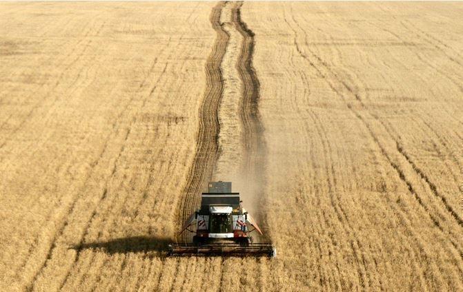 France Info: РФ потеснила Францию на рынке пшеницы в Африке