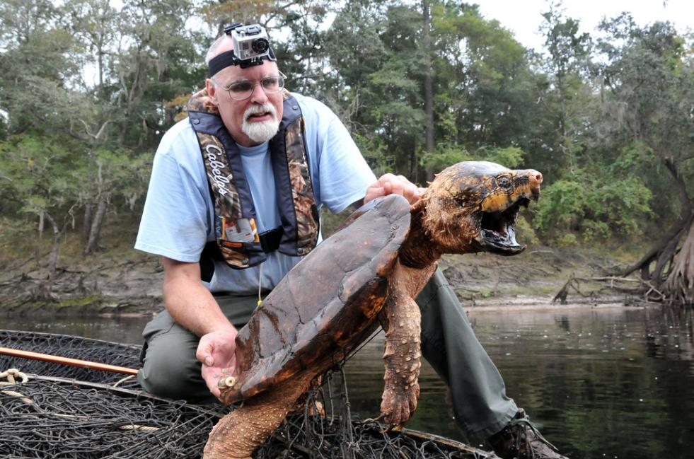 Американец нашел палец человека в черепахе, которую хотел съесть