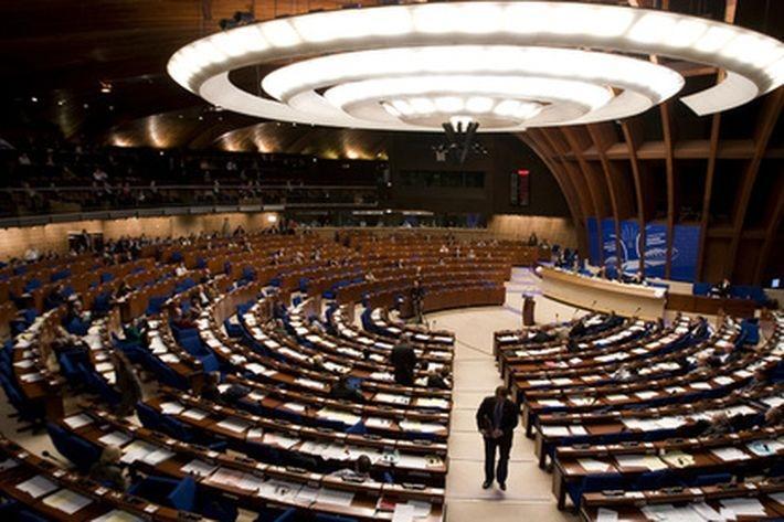 В Совете Европы обеспокоились возможным Ruxit