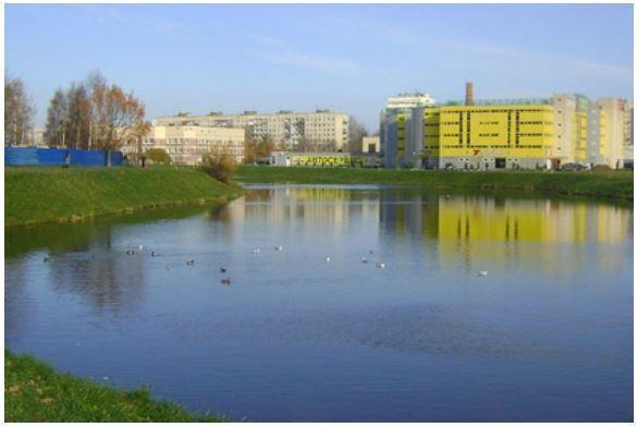 В Петербурге обнаружили реку спирта
