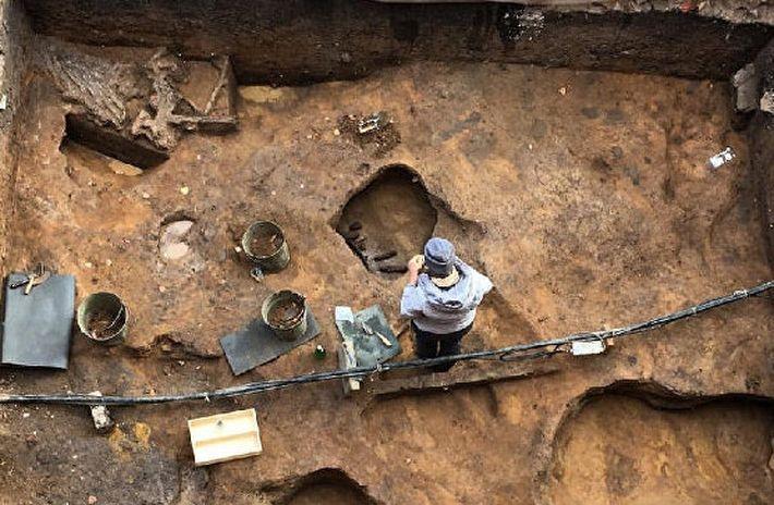 В Подмосковье археологи раскопали череп мамонта с кладом внутри
