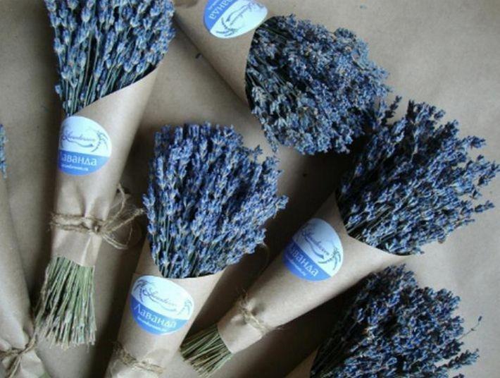 Не цветы и не конфеты. 10 подарков для женщин на 8 марта