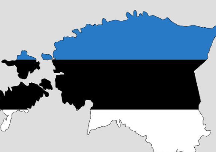 Эстония заподозрила РФ в подготовке к войне