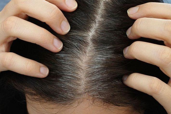 5 способов скрыть седые волосы без окрашивания и что нельзя делать с сединой