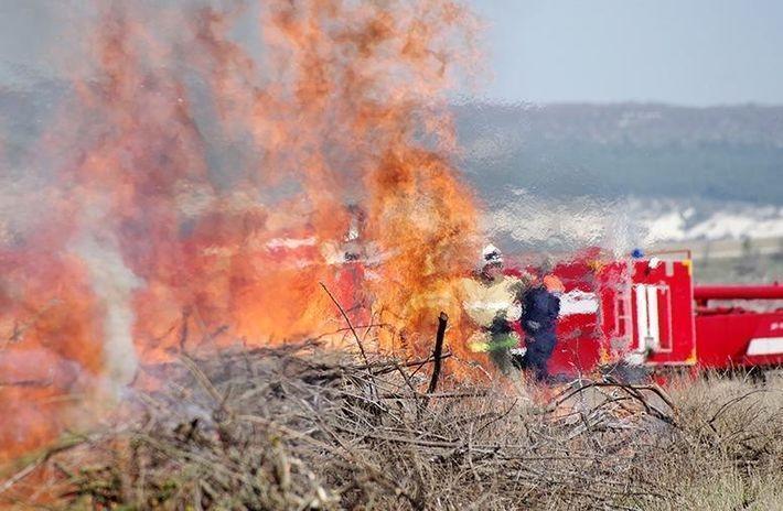 В Луганской области горит заминированный лес