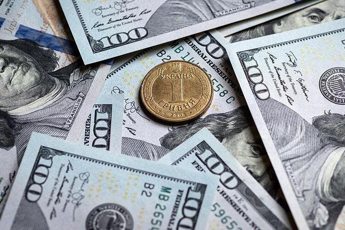 Зеленскому предложили сделать доллар национальной валютой Украины