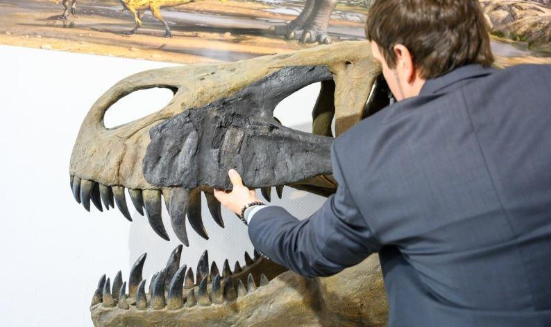 Ученые из США узнали причину вымирания динозавров 1