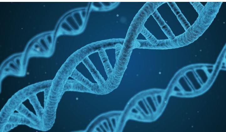 В России будет создана Национальная база генетической информации thumbnail