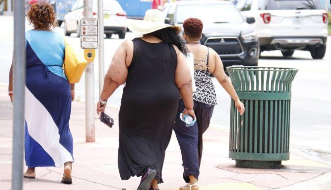 Диетолог назвала главные причины ожирения 1