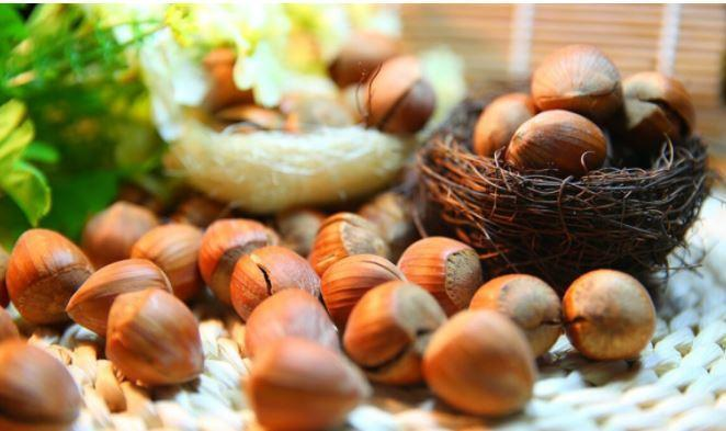 Диетолог назвал допустимую суточную норму потребления орехов 1