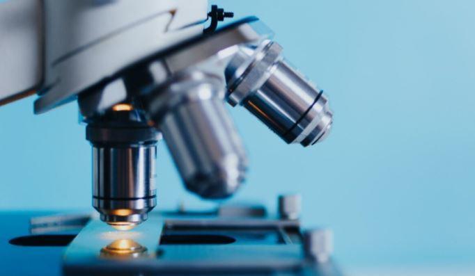 Ученые обнаружили связь между дефицитом витамина D и заражением COVID-19 1