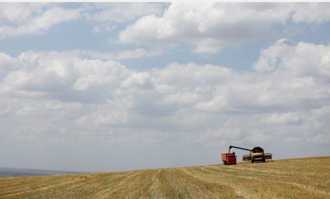 Le Figaro: Россия сделала ставку на «зерновую дипломатию» и не прогадала 1