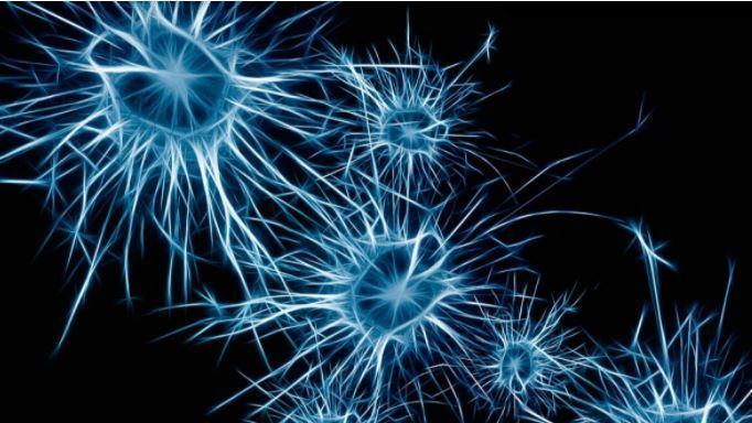 Врачи назвали первые симптомы болезни Паркинсона 1