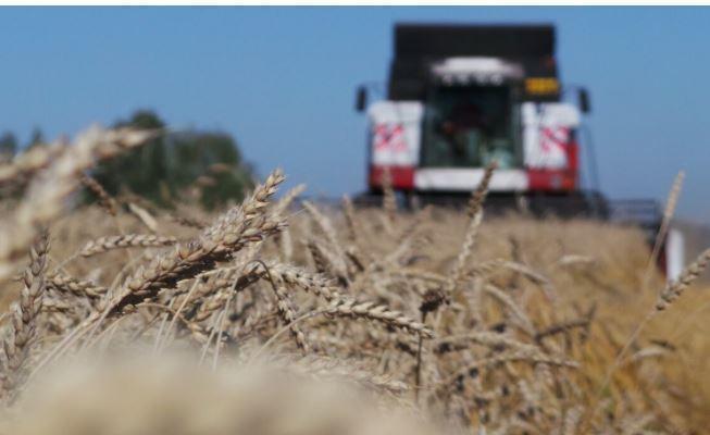 Немецкие эксперты отметили «трюк» России с зерном на фоне краха конкурентов 1