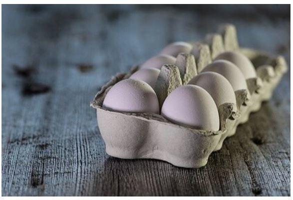 Найдена альтернатива куриным яйцам в рационе 1