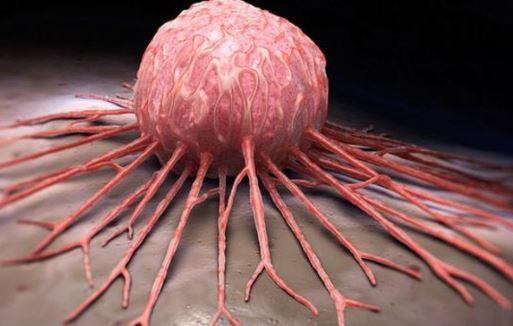 Обнаружен новый способ убить раковые клетки 1