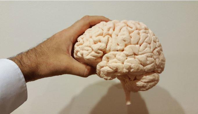 Медики назвали популярное лакомство, которое улучшает работу сердца и мозга 1