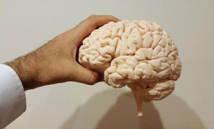 Психиатр рассказал, как замедлить возрастной упадок функций мозга 1
