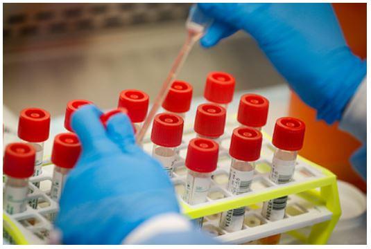 Найдены новые блокирующие коронавирус препараты
