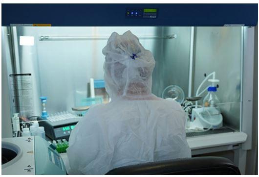В России создали вакцину от COVID-19 со сроком иммунитета до 17 лет