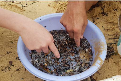 Ученые нашли способ избавиться от микропластика