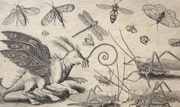 На США надвигаются триллионы цикад