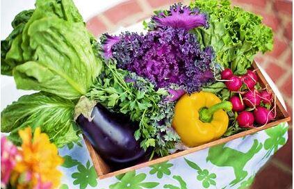 Диетолог назвала идеальные продукты для быстрого похудения