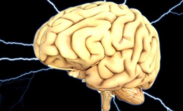 Американские ученые доказали наличие у человека нового типа памяти
