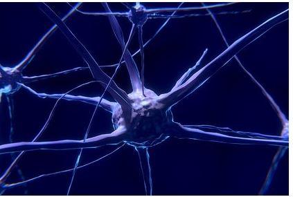 Ученые выявили серьезное воздействие коронавируса на мозг