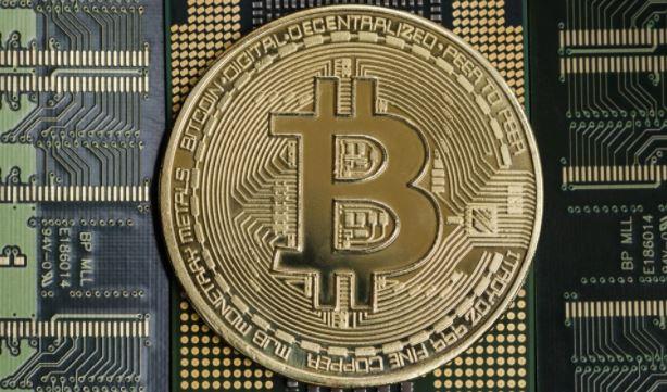Инвесторы считают криптовалюту «крысиным ядом в квадрате»