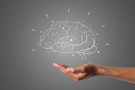 Ученые предупредили об опасности некоторых продуктов для мозга