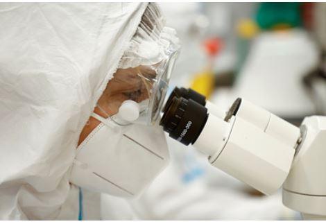 Биолог объяснил четыре мутации коронавируса за два года