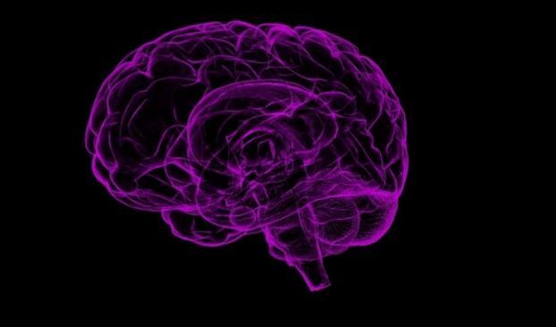 Мозг человека оказался способен путешествовать во времени