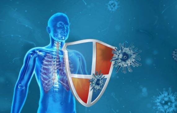Модифицированный вирус SARS-CoV-2 оказался способен убивать настоящий коронавирус