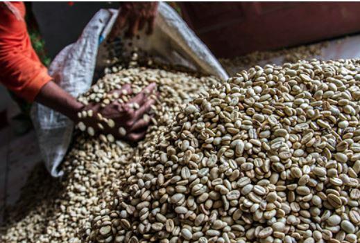 Ценам на кофе предсказали рост